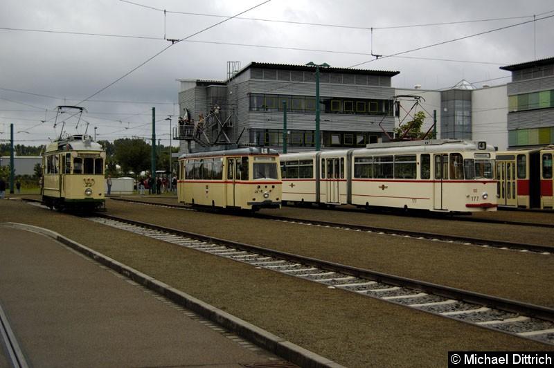 Bild: Von links nach rechts: 23 aus Magdeburg 46 aus Rostock 177 aus Potsdam