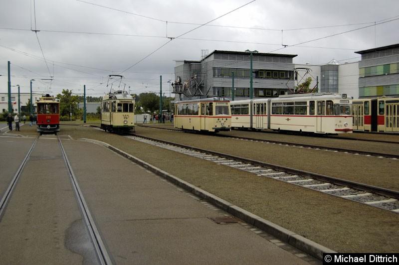 Bild: Von links nach rechts: 299 aus Mariazell, 23 aus Magdeburg, 46 aus Rostock, 177 aus Potsdam